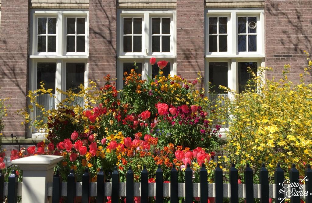 AMSTERDAM Begijnhof 2