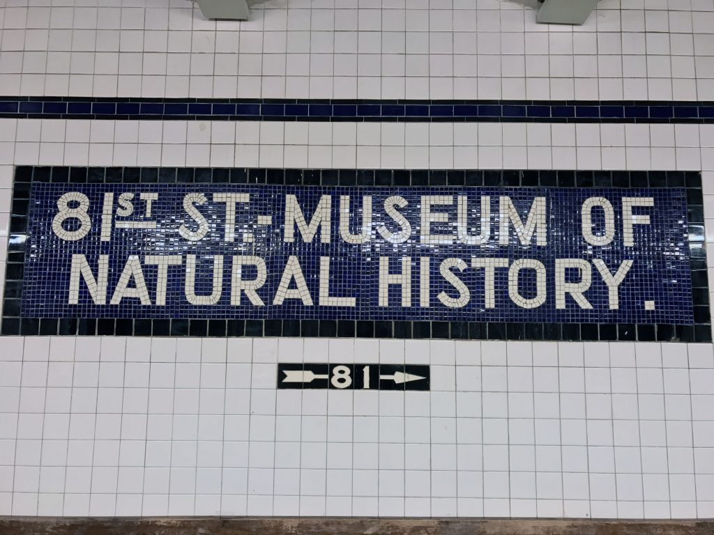 MUSEUM_NATURAL_HISTORY_NEW-YORK_CAROINTHESIXTIES_12